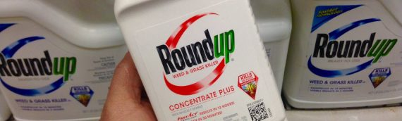 Third Monsanto Roundup Trial Begins Today
